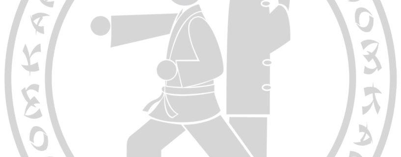 Nouvelle ceinture noire